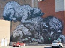 街道艺术北美野牛和獾 库存照片