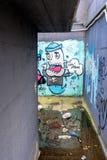 街道艺术和街道画在墙壁上在波滕扎,意大利 库存照片