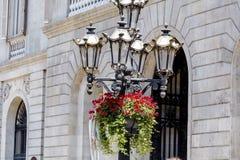 街道金属有垂悬的喇叭花的葡萄酒灯开花 库存图片