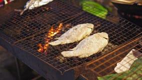 街道食物在亚洲,夜市场,鱼在火、传统亚洲食物游人的和旅客烹调了 股票视频