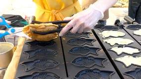 街道食物 与甜红豆酱的Taiyaki日本鱼型蛋糕积土 股票录像