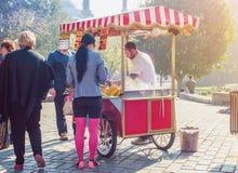 街道食物-在蓝色清真寺伊斯坦布尔附近的烤栗子卖主 免版税图库摄影