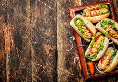街道食物 热狗用芥末,辣调味汁、葱和绿色 库存照片
