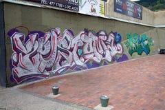 街道画在波哥大哥伦比亚 免版税库存图片
