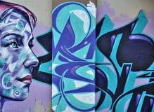 街道画墙壁 库存例证