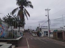 街道 库存图片
