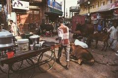 街道colorfull生活在印度,瓦腊纳西 图库摄影