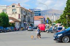 街道Rruga Vilson,圆山大饭店欧罗巴在斯库台,阿尔巴尼亚的市中心 免版税库存照片