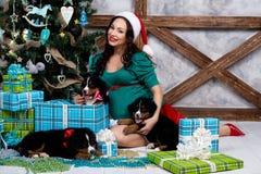 衣服的孕妇与在圣诞树附近的一条画报狗 免版税库存照片
