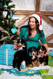 衣服的孕妇与在圣诞树附近的一条画报狗 免版税库存图片