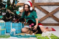 衣服的孕妇与在圣诞树附近的一条画报狗 库存照片