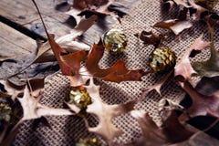 衣服饰物之小金属片球和烘干在木板条的叶子 图库摄影