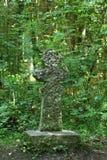 补偿十字架在国家公园Hainich在德国 库存照片