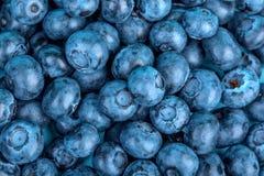 滋补和甜黑暗的蓝莓顶视图健康饮食的作为背景 滋补夏天点心的有机莓果 库存照片