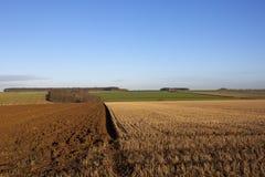 补缀品风景在秋天 库存照片