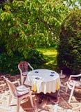表和位子在樱桃树下的庭院里 免版税图库摄影