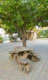 表在树下 免版税图库摄影
