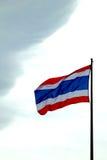 代表每个国家的旗子 库存照片