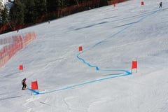 表示的障碍滑雪滑雪道 免版税库存图片