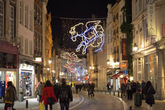 代表著名星座的圣诞节照明 免版税库存照片