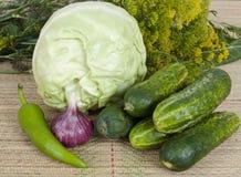 表蔬菜 库存图片