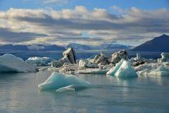 水表面上的浮动冰山 免版税库存图片