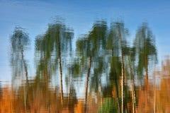 水表面上的秋天题材  免版税图库摄影