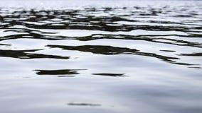 水表面和波浪 免版税库存照片
