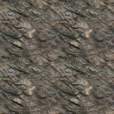 表面岩石 库存照片