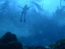 表面游泳者 免版税库存照片
