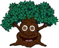 表面结构树 库存照片