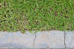 表面草和石头地面 图库摄影