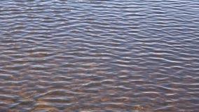 水表面,晴天 股票视频