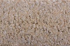表面黑麦油炸马铃薯片面包 库存图片