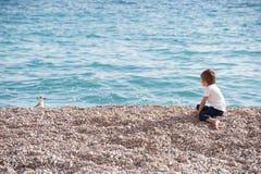 衬衣的小男孩坐海洋岸手表在秋天copyspace的海鸥 库存照片