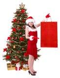 袋子圣诞节冷杉女孩购物结构树 库存照片
