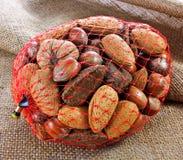 袋子在壳的混杂的螺母 库存照片