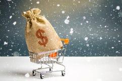 袋子在超级市场台车的金钱 圣诞节促进 购买的礼券 贡献和投资 免版税库存照片