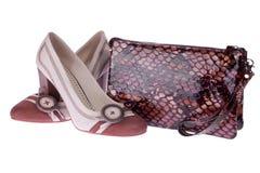 袋子灰棕色穿上鞋子snakeskin 免版税库存图片