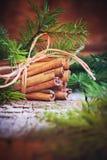 袋子看板卡圣诞节霜klaus ・圣诞老人天空 束用肉桂条和杉树 免版税库存图片