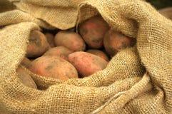 袋子粗麻布新近地开掘了土豆 库存图片