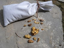 袋子自然金子 库存照片