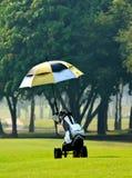 袋子高尔夫球台车 库存图片