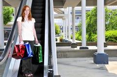 袋子购物的妇女 库存图片