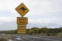 袋鼠地标 澳洲 库存照片