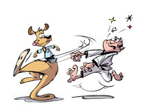 袋鼠成交  向量例证