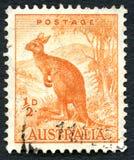 袋鼠澳大利亚邮票 免版税图库摄影