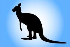 袋鼠 免版税库存照片