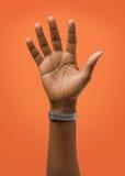 被上升的女性手佩带的圆环 库存照片