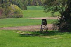 被上升的皮和绿色草甸 库存照片